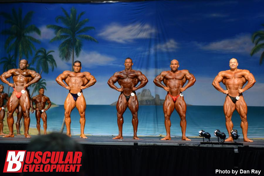 2013 Europa Show of Champions - updates and info!